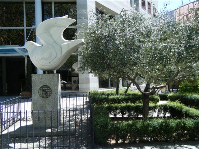 paloma y fachada