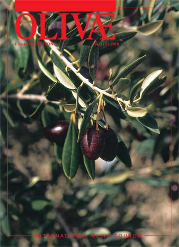 Cover Olivae 113