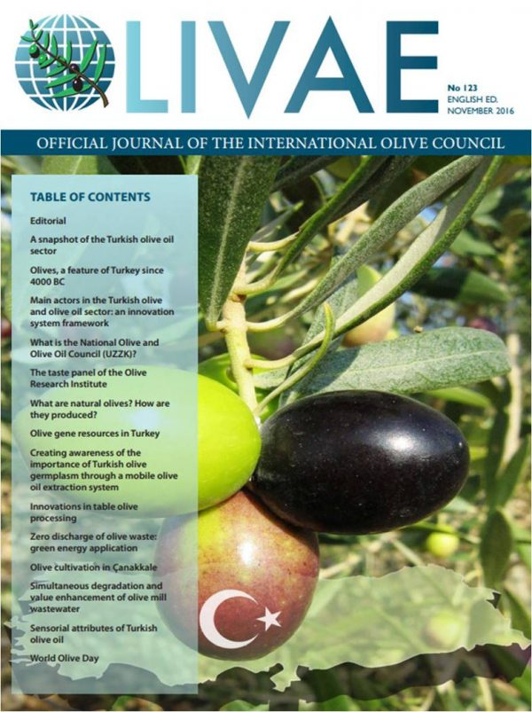 Cover Olivae 123
