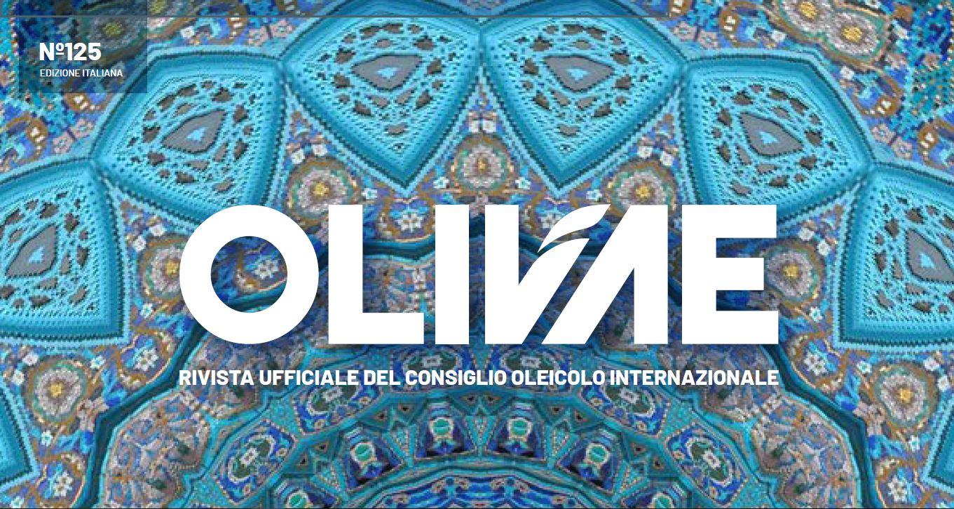 OLIVAE ITALIANO 4