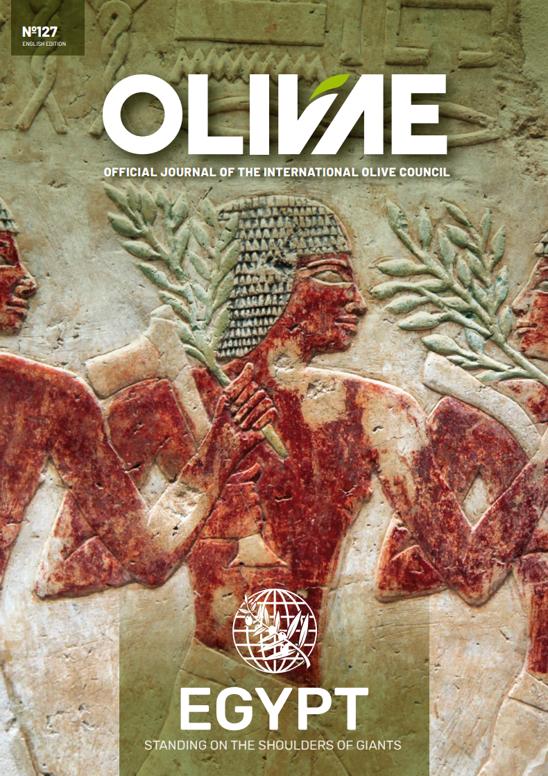 Olivae 127 Arabic edition cover